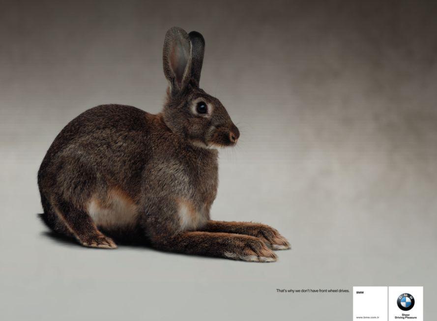 BMW rabbit add no longer true