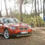 2013 BMW X1 (53)