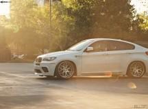 BMW X6 M Sits on Avantgarde Wheels