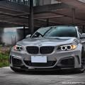 BMW M235i by M Sport (1)