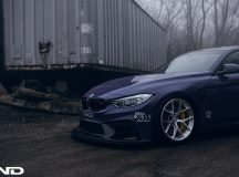 Impressive Media Gallery: This iND`s Outstanding Program on F80 BMW M4